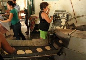 Mari working the tortilla machine