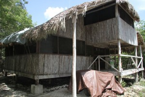 Home Base @ The El Eden Eco Reserve